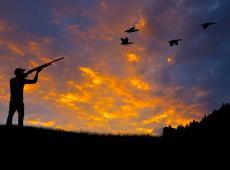 Jacht - zonsondergang