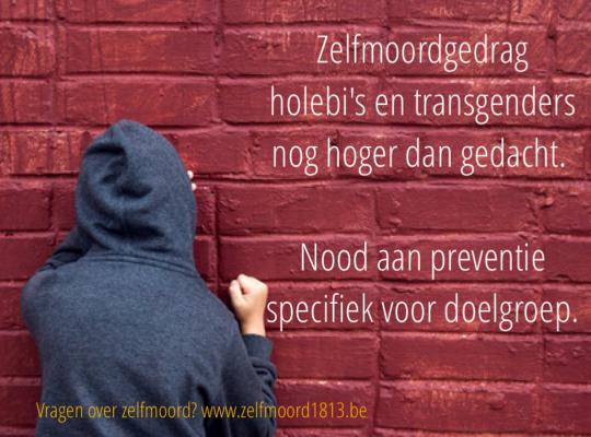 Zelfdoding holebi's doelgroepspecifiek beleid - Piet De Bruyn