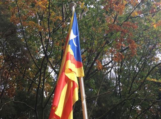 Piet De Bruyn verdedigt vrijheid van Catalaanse volk om zelf over toekomst te beslissen