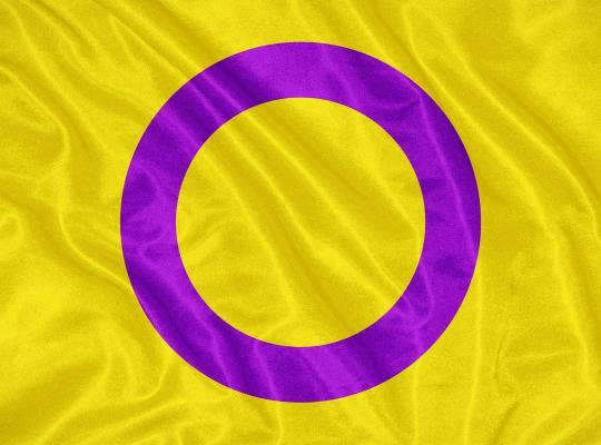 Piet De Bruyn_De impact van Europees interseks-rapport in het oosten