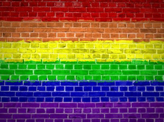 Interview Piet De Bruyn over geweld tegen LGBTI's (persdienst Raad van Europa)