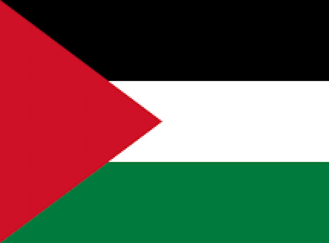 N-VA en de Palestijnen: een geval van 'enerzijds, anderzijds' - Piet De Bruyn